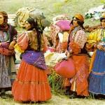 Seth's Tribal Order